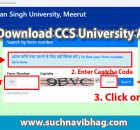 Download CCS University Admit Card 2020 and exam date sheet (Exam Scheme)